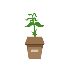 Sprout In A Box vector image