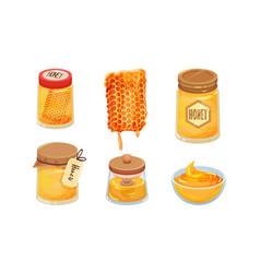 Sugary honey in jars and honey combs set vector