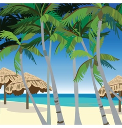 Tropic Beach with Palm trees vector image