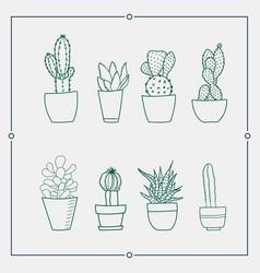 green cactus in a pot vector image