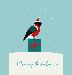 christmas flat style bullfinch winter holiday vector image