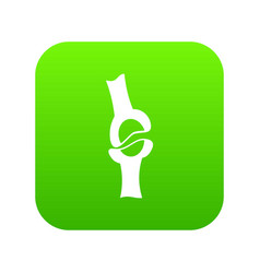 knee joint icon digital green vector image
