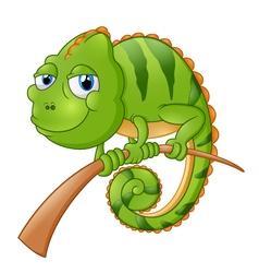 lizard cartoon vector image