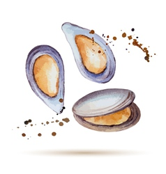 Watercolor mussels vector
