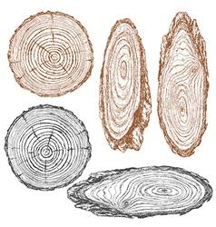 Wood texture sketch vector