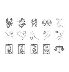 zodiac astrology horoscope calendar constellation vector image