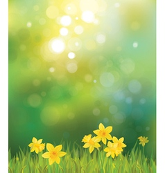 spring back vector image vector image