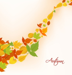 Autumn fall leaves background vector