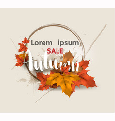 autumn sale layout decorate for web and banner vector image