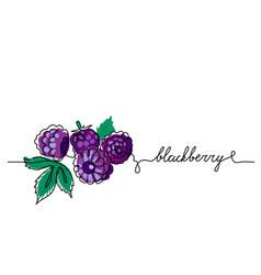 Blackberry bramble dewberry color vector