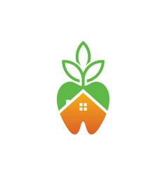 dental home logo template vector image