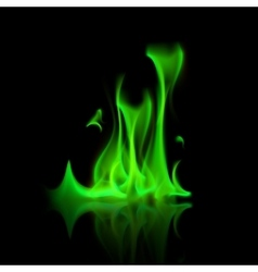 Green Magic Fire Flame Bonfire Isolated vector