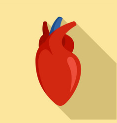human heart icon flat style vector image