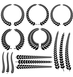 Laurel Wreath Set Isolated vector image