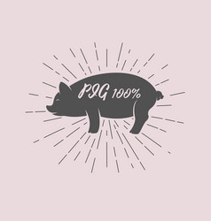 lettering within silhouette of pig vector image