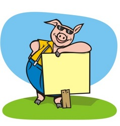 Pig with sign vector