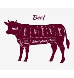 Scheme of Beef Cuts for Steak and Roast vector