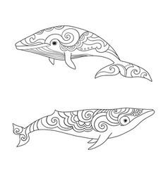 cartoon sea whale sketch doodle vector image vector image
