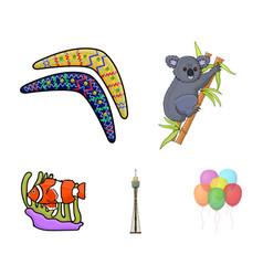 koala on bamboo boomerang sydney tower fish vector image vector image