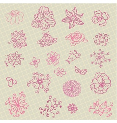 collection of hand-drawn flowers vector image vector image