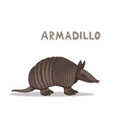 a cartoon armadillo isolated on a white vector image