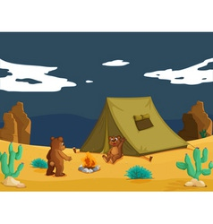 Bears camping vector image