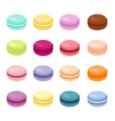 cake macaron or macaroon vector image