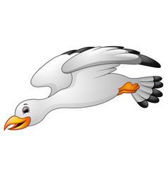 Cartoon seagulls flying vector