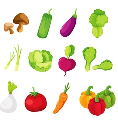 Collection vegetables vector image