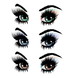 Evening eye make up vector image