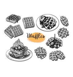 Ink sketches waffles vector