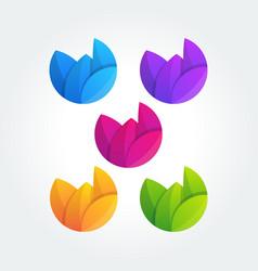 leaf design elements template vector image