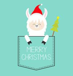 Merry christmas alpaca llama sitting vector