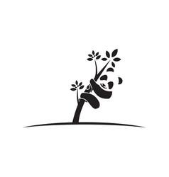panda climb tree logo vector image