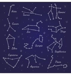 Zodiacal constellations signs vector