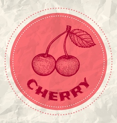 cherry vintage paper vector image