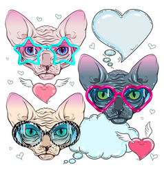 colorful icons cat in trendy glasses and a cat vector image