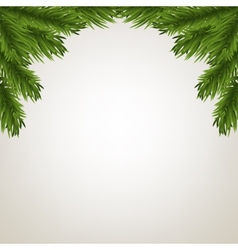 Fir tree branches frame vector image