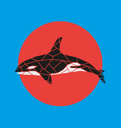 geometry grampus whale vector image