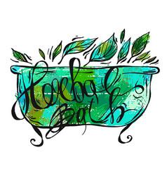 hand drawn herbal bath herbal vector image