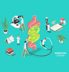 Human gut flora healthy digestive system 3d vector