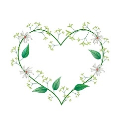 Night Blooming Jasmines in A Heart Shape vector image vector image