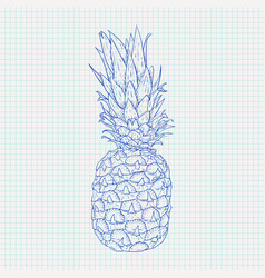 pineapple hand drawn sketch on notebook sheet vector image