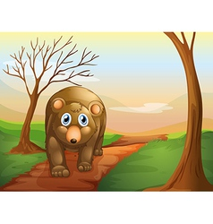 The lonely bear walking vector