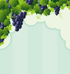 cut vine strip vector image vector image