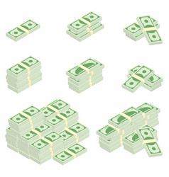 dollars packages of banknotes in various angles vector image