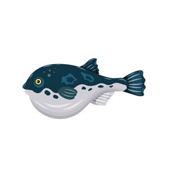 flat fugu pufferfish isolated on white background vector image vector image