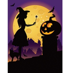 The little witch on the roof vector image vector image