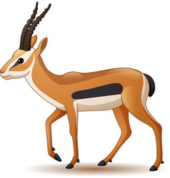 cartoon antelope isolated on white background vector image