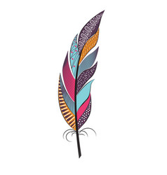Large colored feather with patterns vector